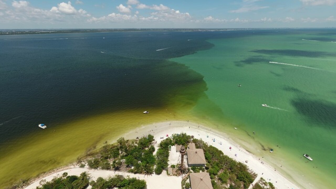 Aerial images show brown water hitting the Gulf