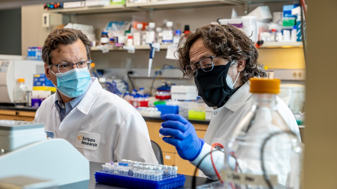 Scientists at Scripps Research are in the process of developing a COVID-19 vaccine that is broken down to powder, shipped to delivery sites without refrigeration and mixed with water before injecting individuals.