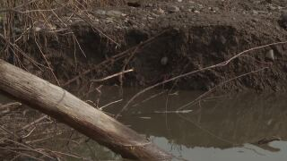 Montana Ag Network: Sun River Valley flooding continues to impact farms and landowners