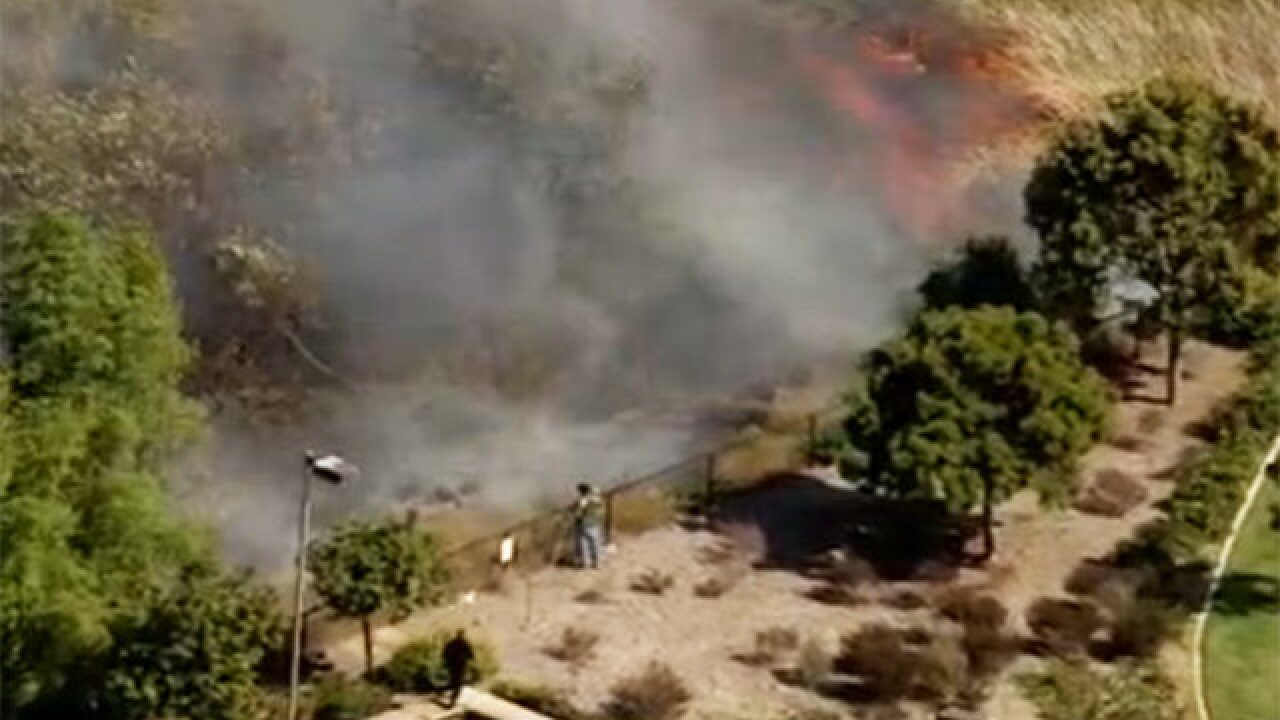 Firefighters respond to 4S Ranch-area brush fire