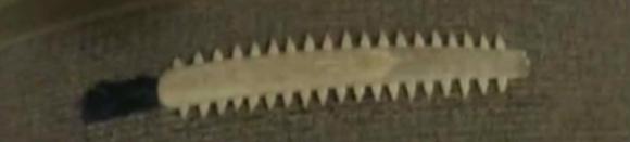 Michael Clark's swordfish sword