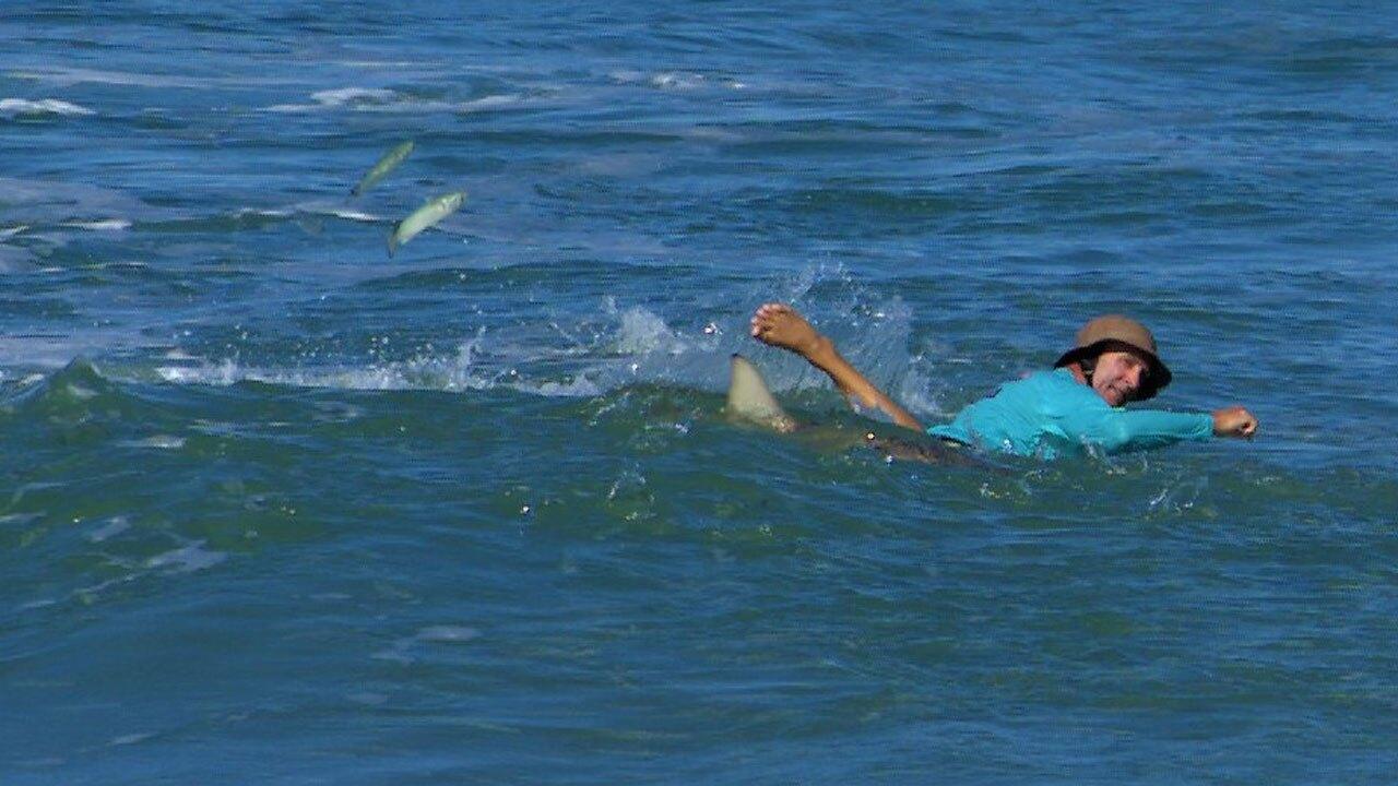 Surfer encounters shark at Sebastian Inlet on Oct. 3, 2021