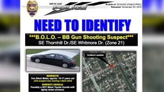 wptv-bb-gun-shootings.jpg