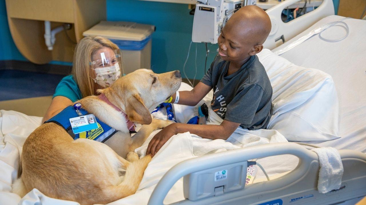 Johns Hopkins All Children's Hospital Brea.jpg