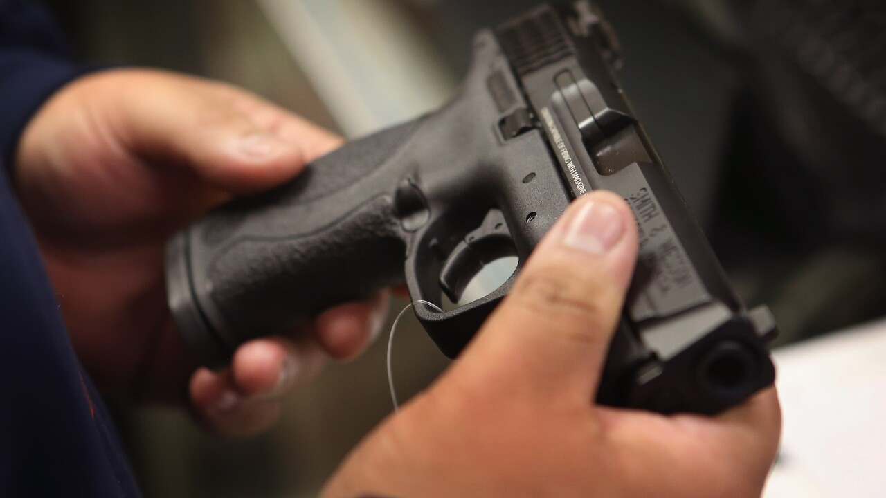 House to vote on guns background check bill with bipartisan support