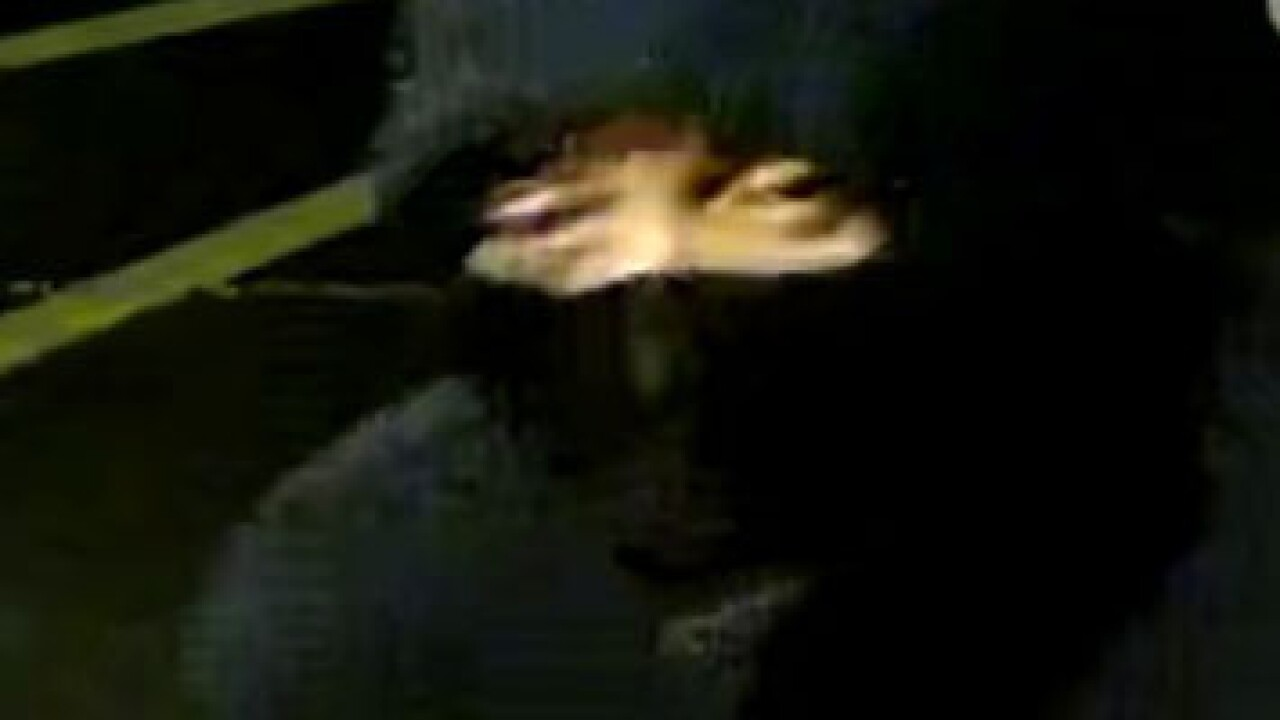 Suspect 3.jpg