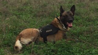 Indiana K-9 officer killed in the line of duty