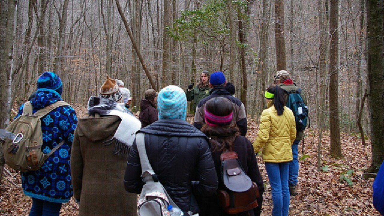 Tennessee State Parks offering free, guided hikes for the New Year
