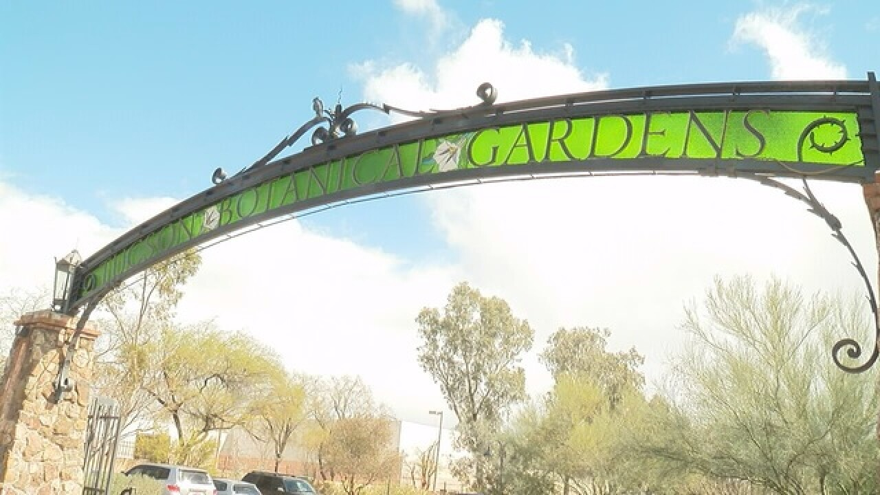 Botanical Gardens hopes to expand at Fry's site