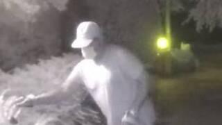 VB burglar.jpg