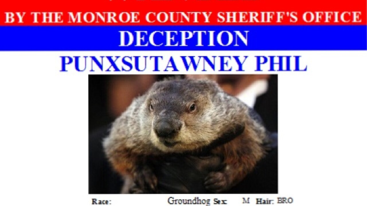 Punxsutawney Phil wanted for deception