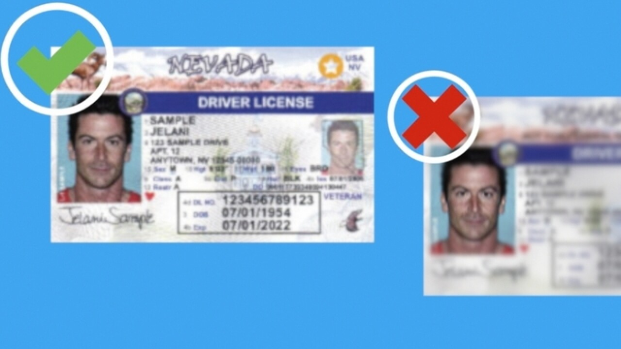 new michigan drivers license to fly