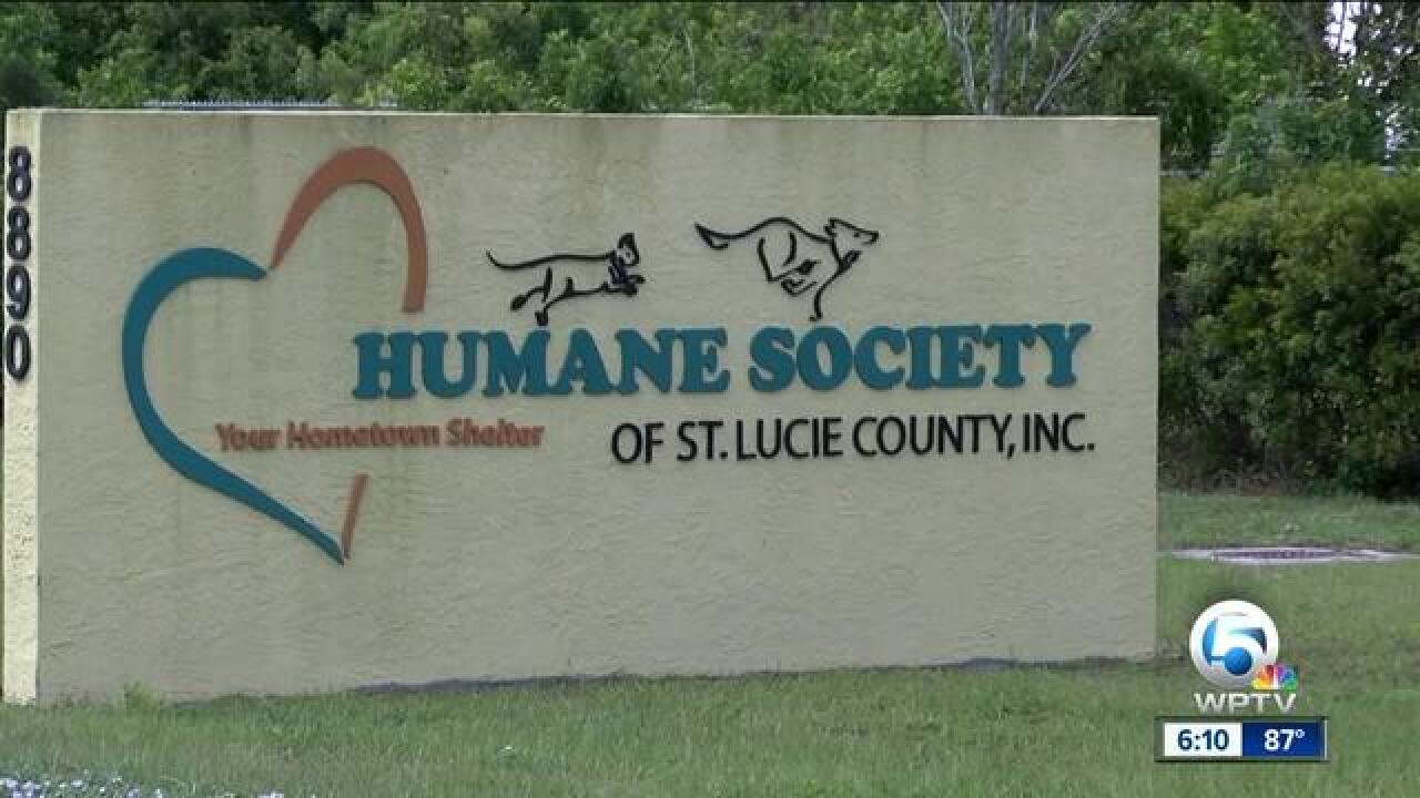 Inspections outline issues at Humane Society