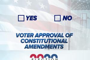 Election2020-Amendment4.png