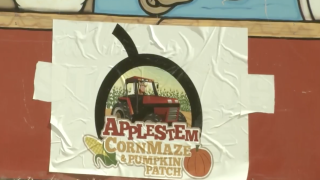 Applestem Corn Maize and Pumpkin Patch closed for 2019 season