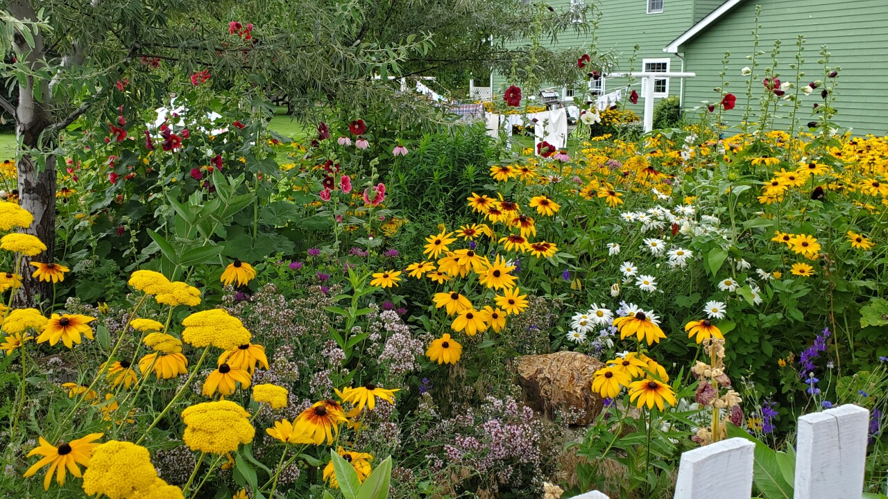 Broadwater County residents showcase their backyards in annual garden event