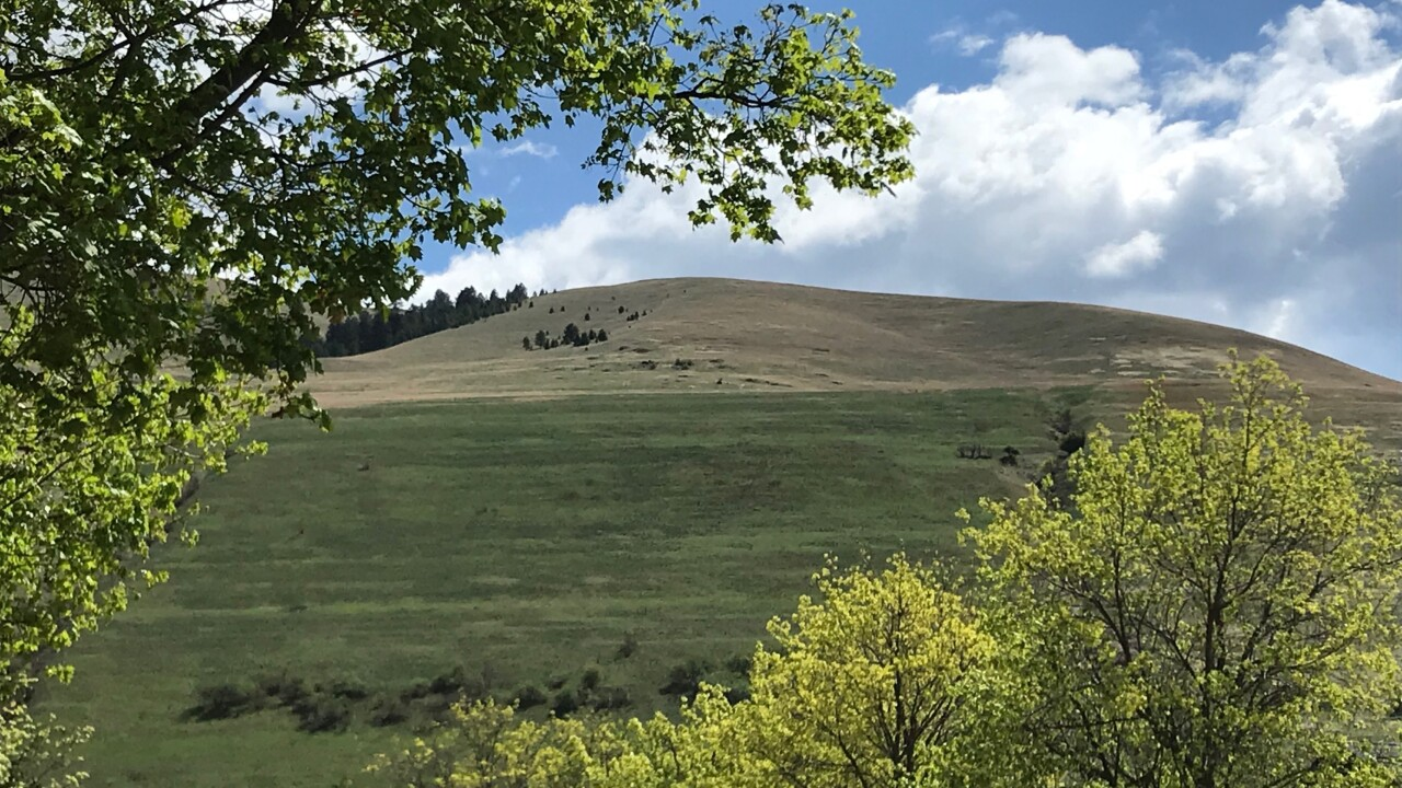 Mount Sentinel showcases regrowth after 2020 grassland fire