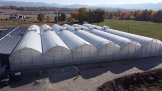 Local Bounti is a company specializing in growing facilities that are focusing on a new way of farming.