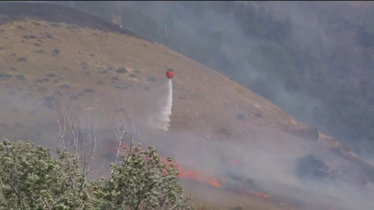 Francis Fire reaches 365 acres, 68 percent contained