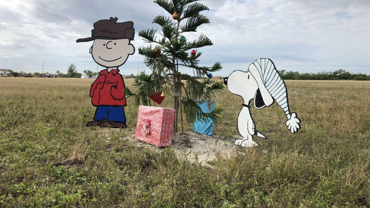 Charlie Brown tree Cape Coral 12-12-18.jpg