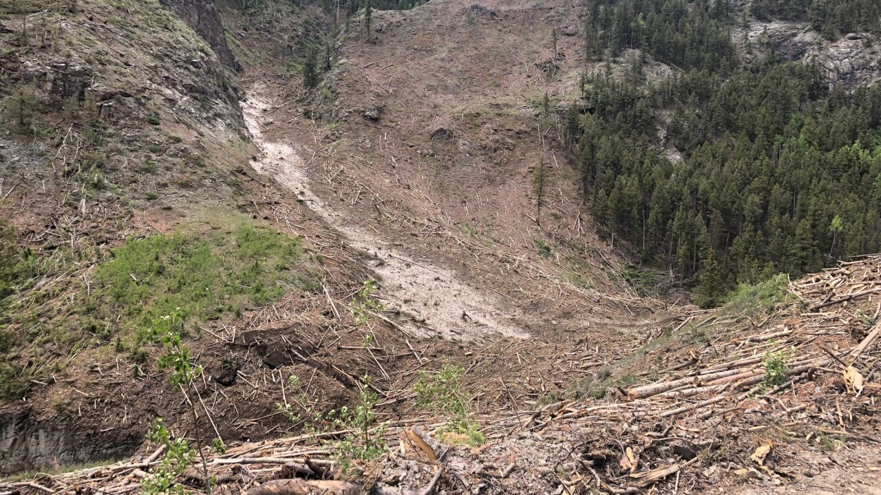 Hinsdale County avalanche damage