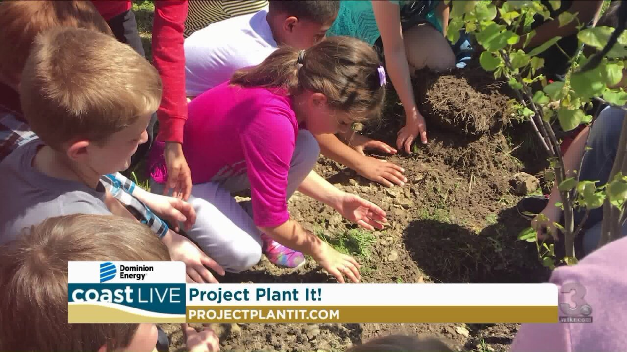 Taking an environmental quiz and learning about Project Plant It! on Coast Live