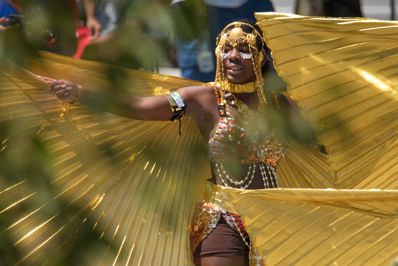 Caribbean Fest-16.jpg