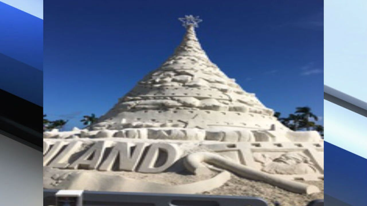 How WPB protects Sandi tree from elements