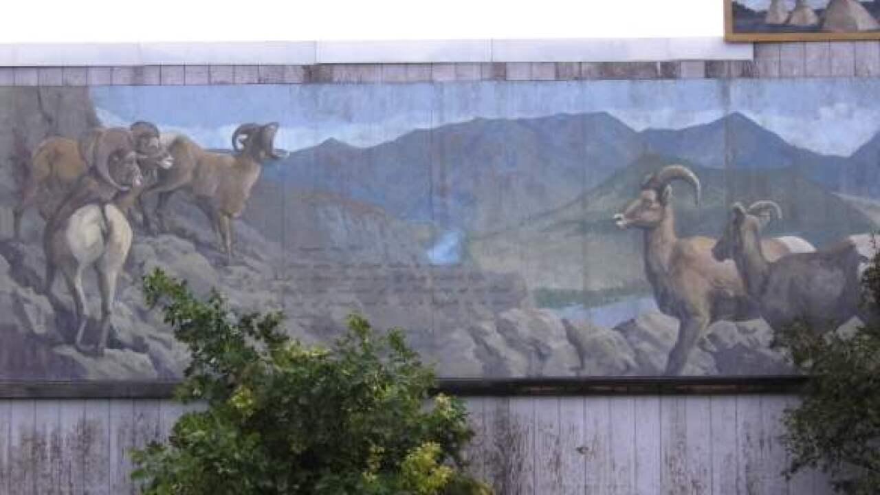w-sheep-mural-whitehall.jpeg