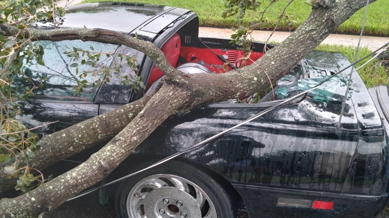 wptv-tropical-storm-eta-wpb-damage.jpg