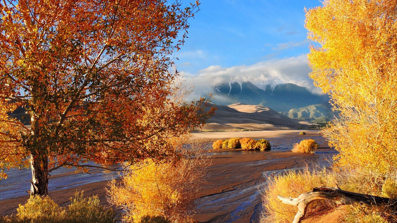 Great Sand Dunes National Park and Preserve in the Fall 9.jpg