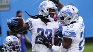 Lions Panthers Football