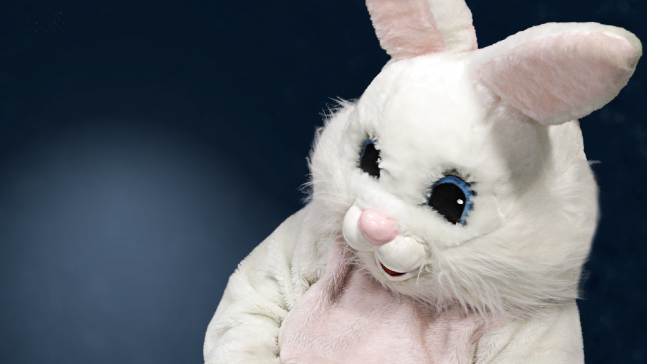 Easter Bunny to make a visit to East Aurora