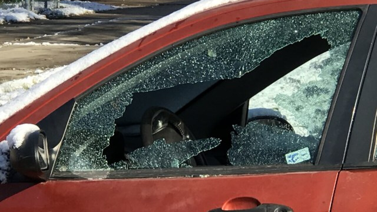 At least 24 vehicles damaged by BB guns