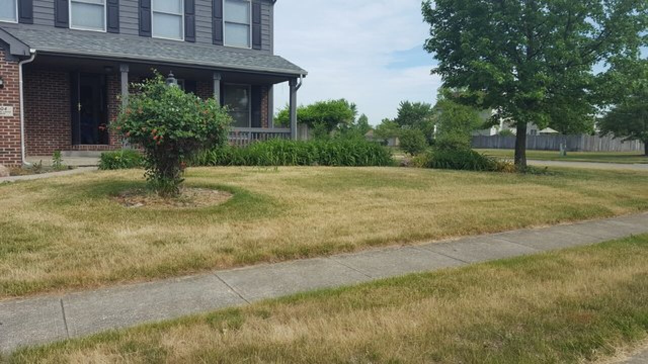 Indianapolis eyesore property full of high weeds, grass mowed following Call 6 report