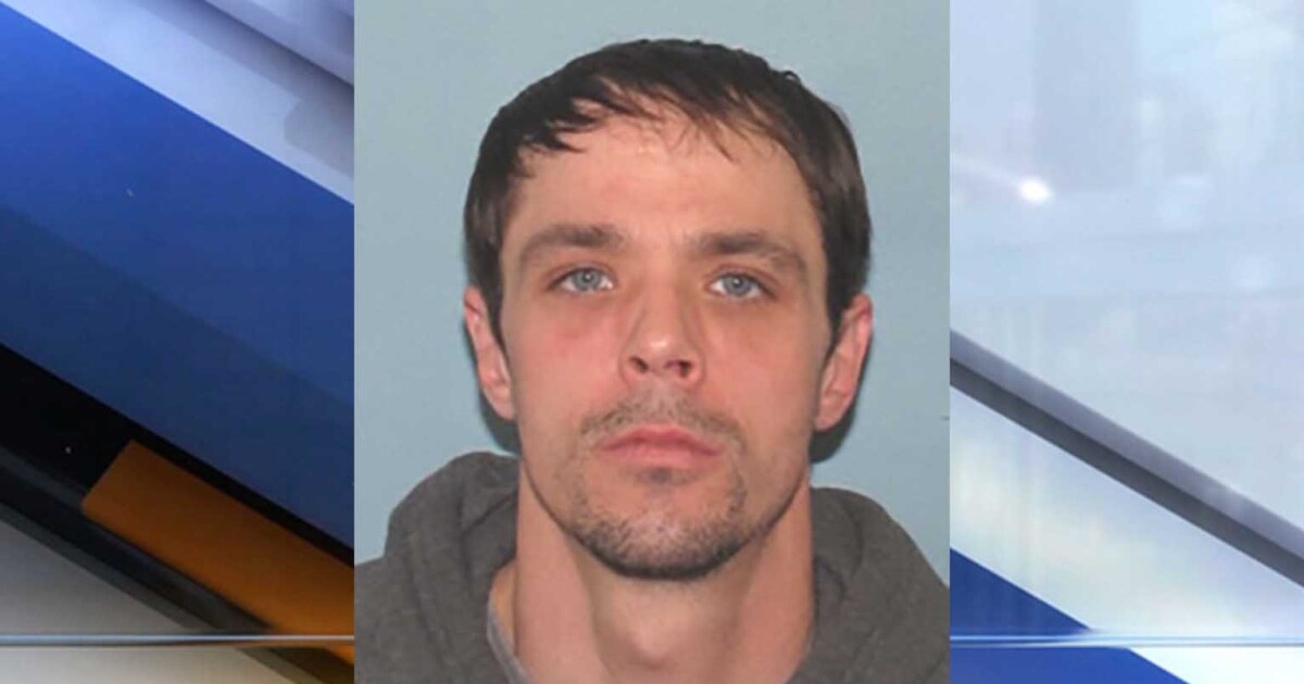 Man wanted for assaulting girlfriend, her daughter in Parma