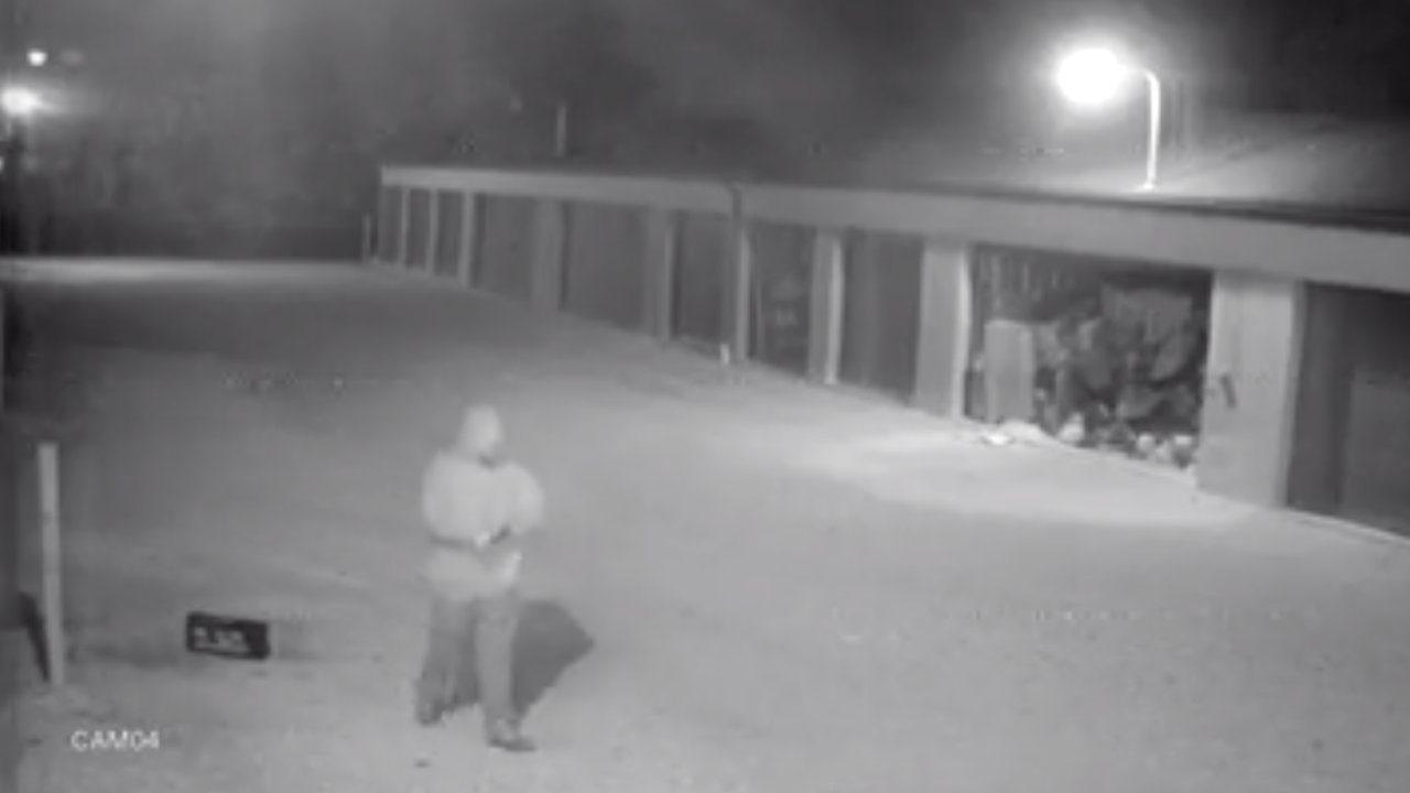 Storage unit thief