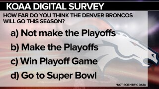 thumbnail_SURVEY Broncos.jpg