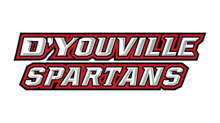 D'Youville sports to move up to NCAA's Division II