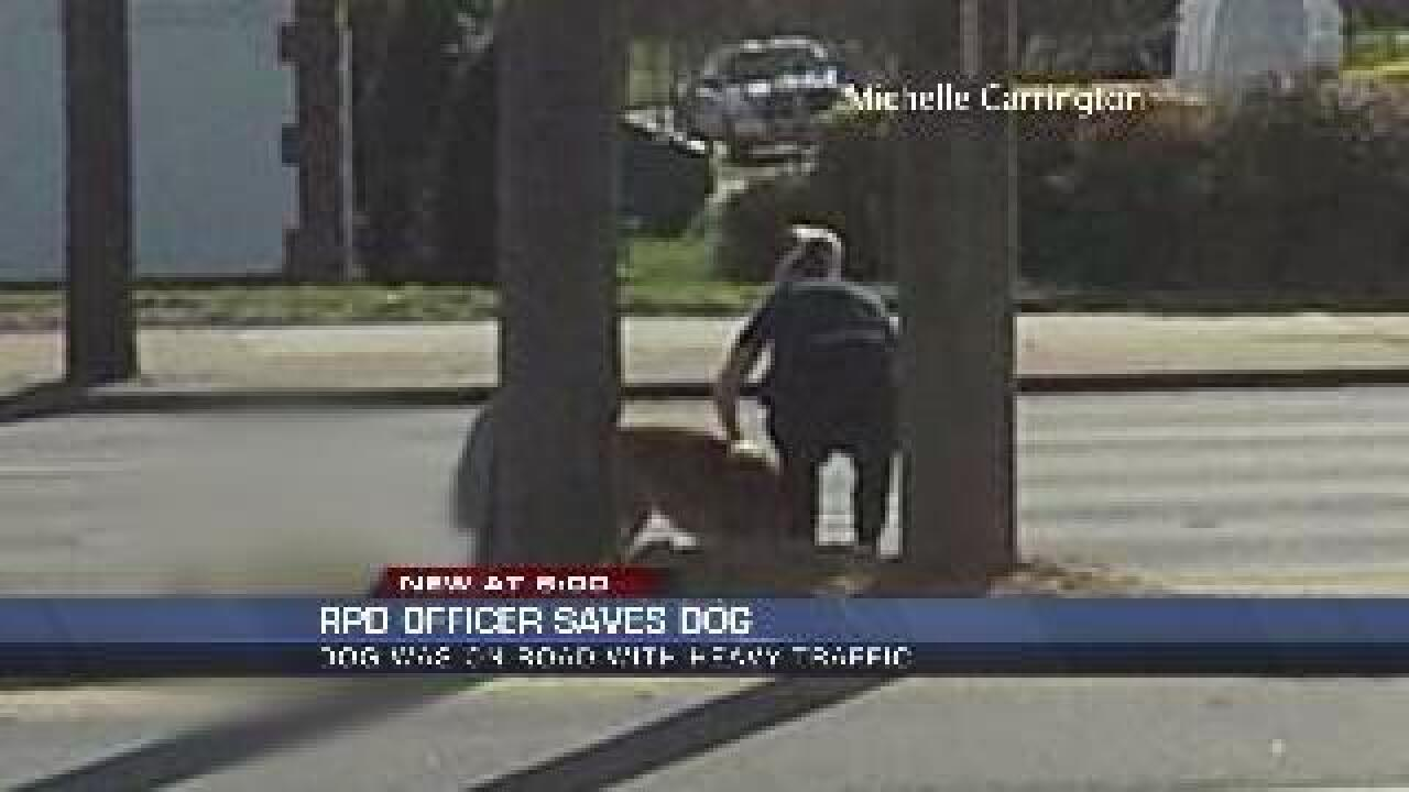 Police officer stops to save life of distraught dog