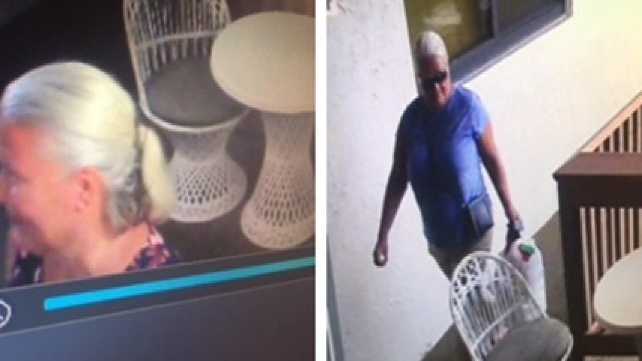 Fugitive Grandma on the run accused of killing 2