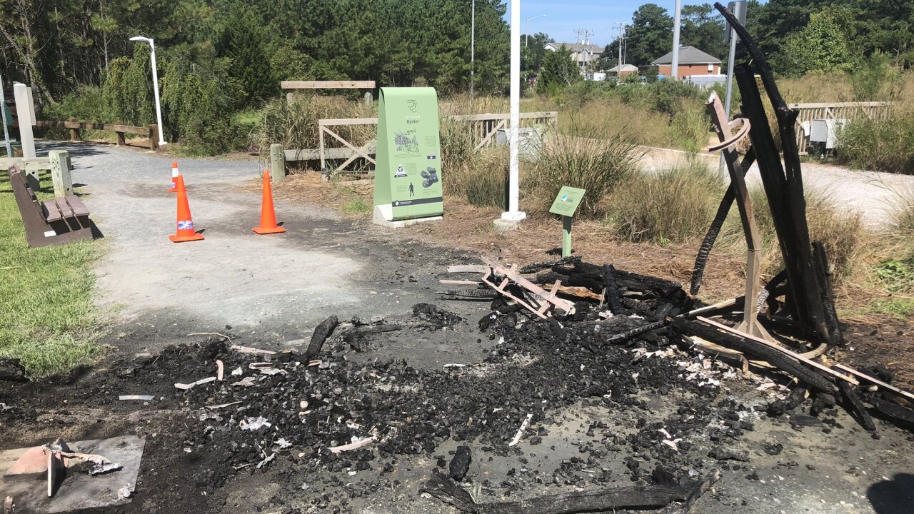 Beloved driftwood sculpture at Virginia Beach park found burntdown