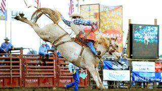 Mandan Rodeo Days final results