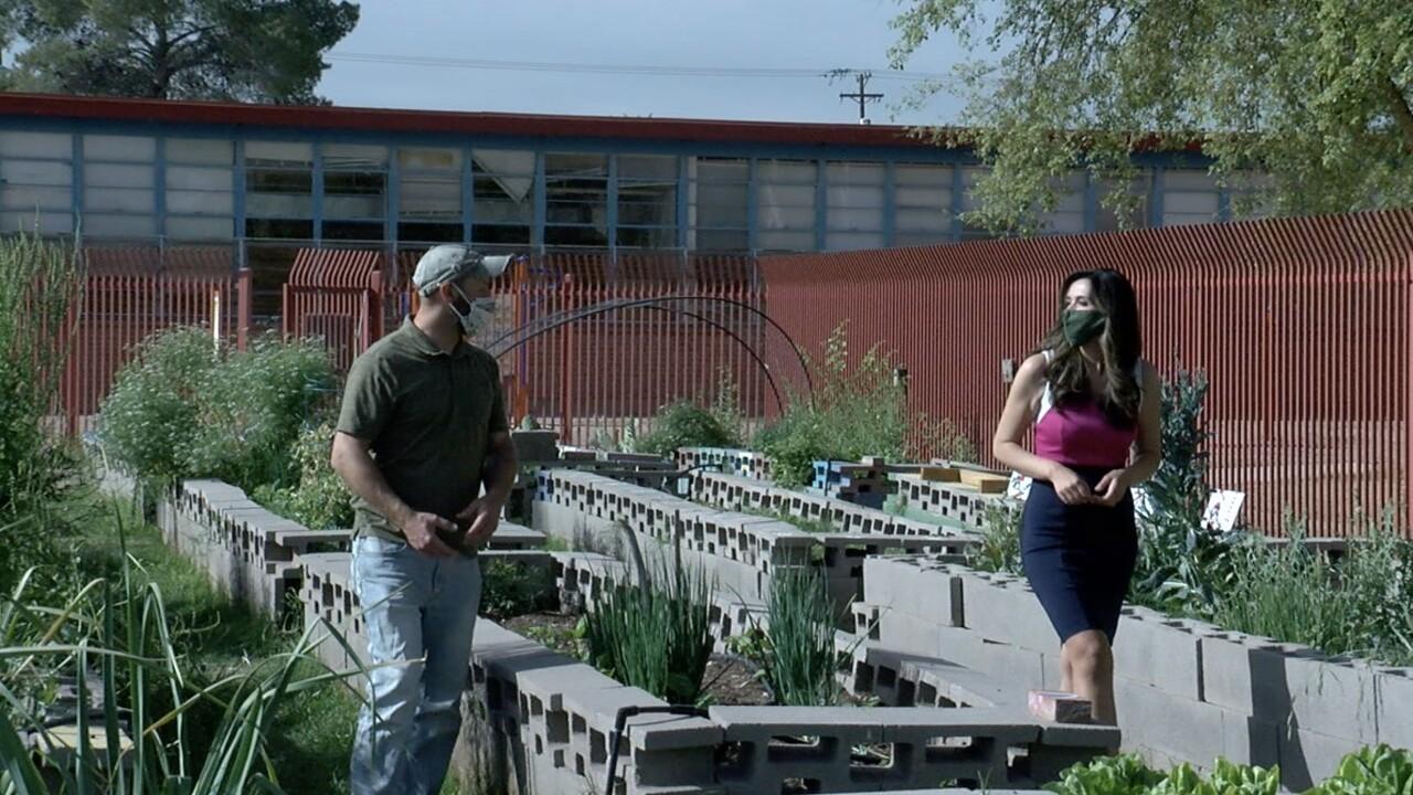 community gardens of tucson