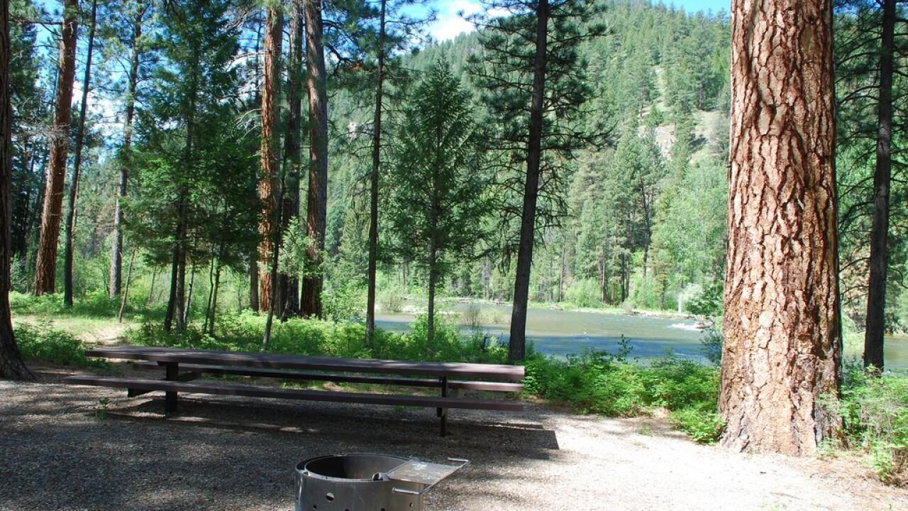 BNF Campground.jpg