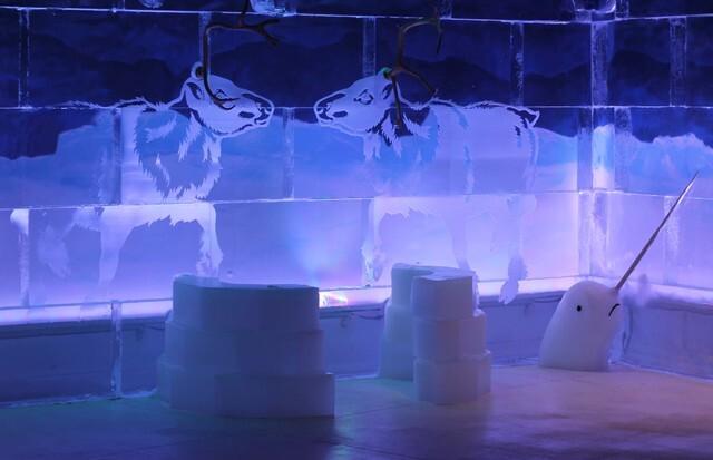 Polar Play: Arizona ice bar coming to Odysea in the Desert
