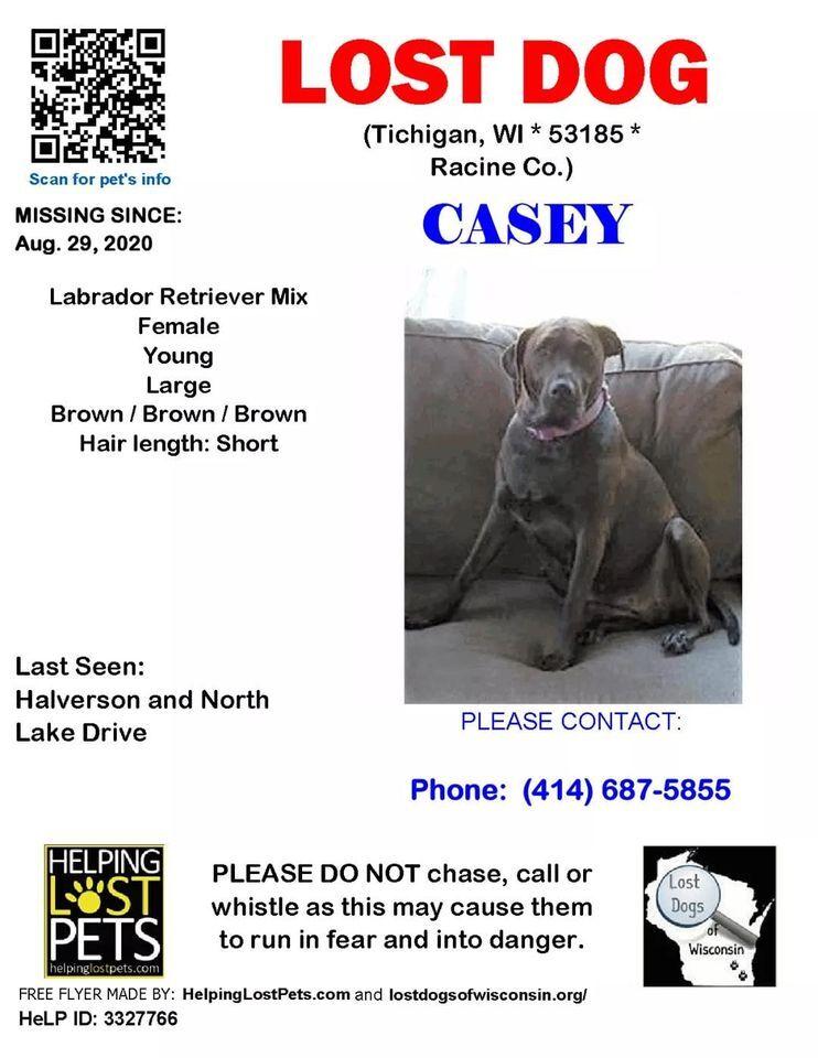 Casey LDoW poster.jpg