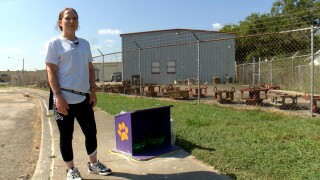 Woman's food, water boxes for stray animals taken by city