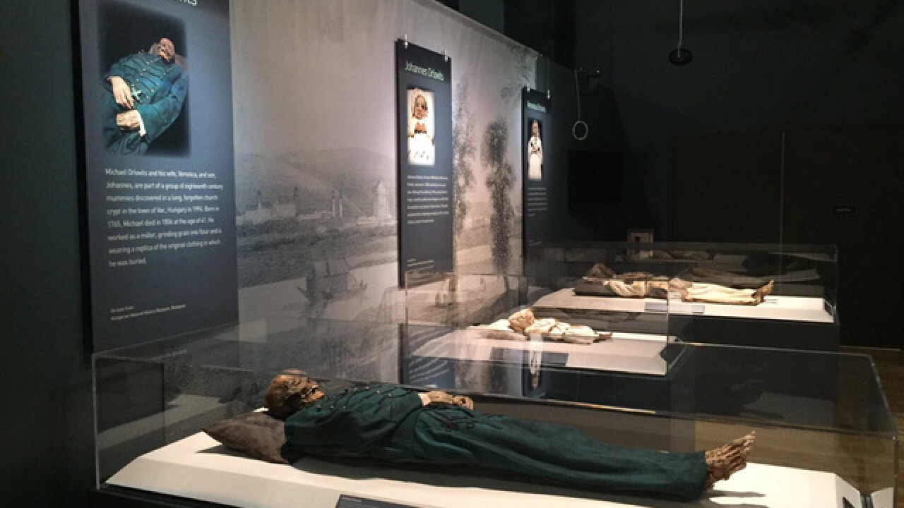 Mummies of the World opens at Union Station