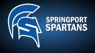 Springport High School